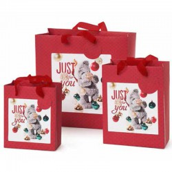 Me to You gift bag 3 sizes